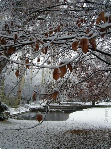 Вот таким был наш первый снег! Зима у нас началась очень рано для Германии - в ноябре. фото 11