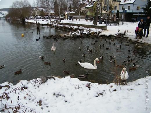 Вот таким был наш первый снег! Зима у нас началась очень рано для Германии - в ноябре. фото 26