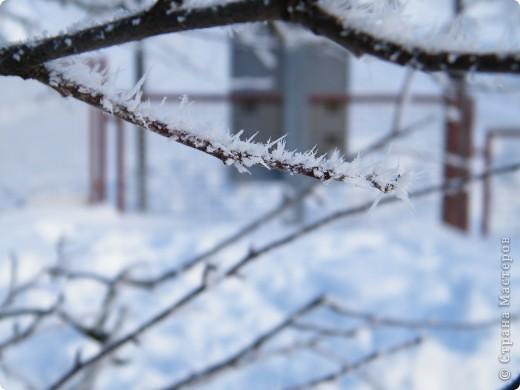 Вот таким был наш первый снег! Зима у нас началась очень рано для Германии - в ноябре. фото 22