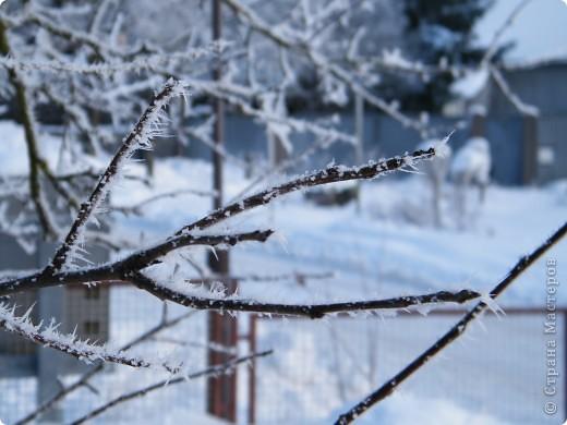 Вот таким был наш первый снег! Зима у нас началась очень рано для Германии - в ноябре. фото 23