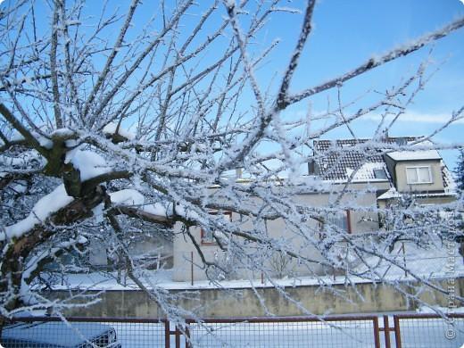 Вот таким был наш первый снег! Зима у нас началась очень рано для Германии - в ноябре. фото 20
