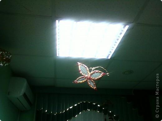 Бабочка!!! фото 2