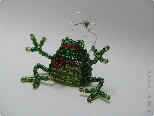 Лягушка - прожорливое брюшко