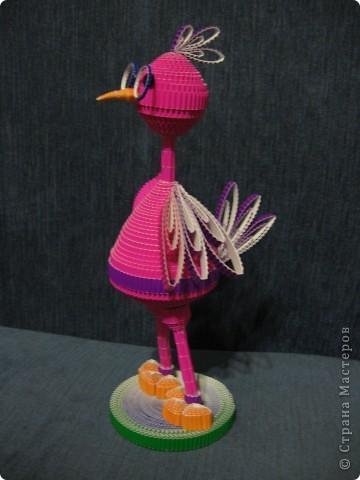 Ученый птиц. фото 2