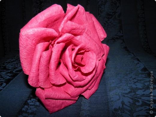 Благодаря nataska7  у меня получилась вот такая чудесная роза... Она действительно очень похожа на настоящую)) фото 1