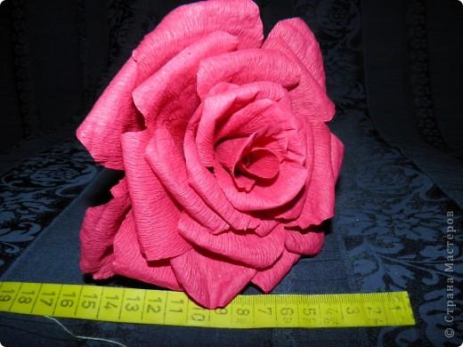 Благодаря nataska7  у меня получилась вот такая чудесная роза... Она действительно очень похожа на настоящую)) фото 2