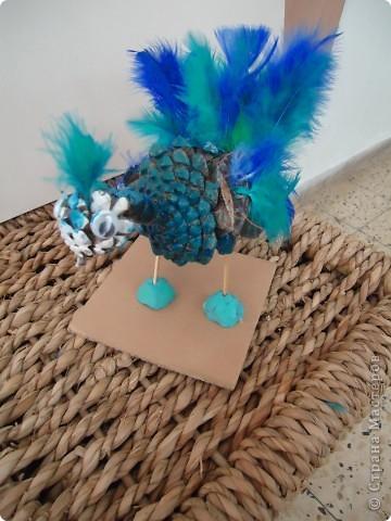 Голубой павлин фото 5