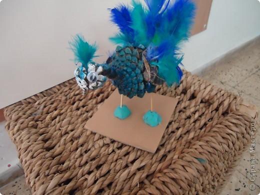 Голубой павлин фото 1
