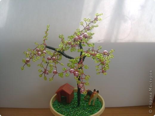 яблоня с охраной