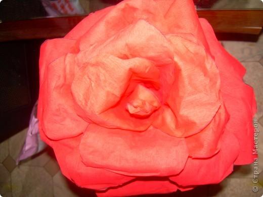 Роза из гофрбумаги фото 2