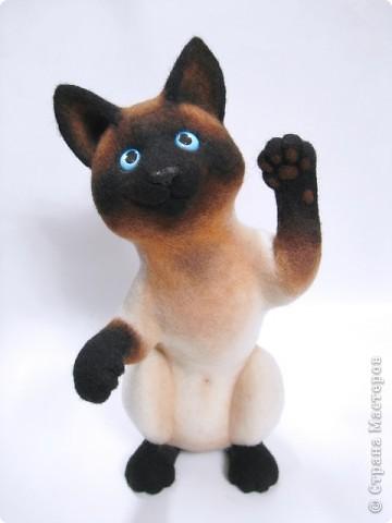 Портретный котик Цезарь. фото 1