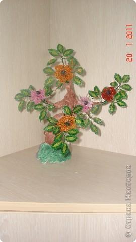 цветущее деревце фото 1