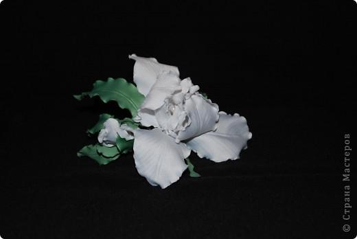 Цветы из ткани ... Ирис фото 1