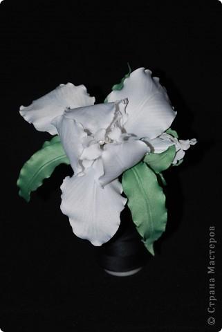 Цветы из ткани ... Ирис фото 2