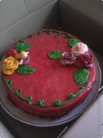 Вот такое украшение обычного медовика к Дню рожденья племяшкию Покрыт пирог мастикой из маршмелоу. Цветы, листочки и цветочница - из нее же. фото 1