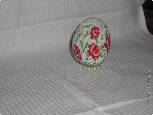 Яйця фото 1