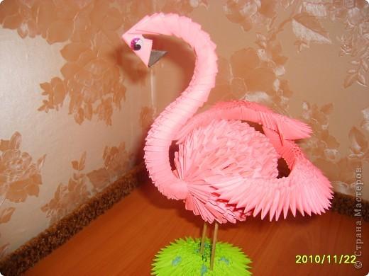 модульное фламинго Бумага