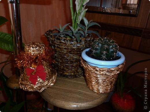 """Потихоньку переодеваю свои комнатные цветы в свои же плетёночки. Дорогие мастерицы, не судите строго! Это мои первые работы, впереди очень много планов, идей и задумок! Будем черпать вдохновение в любимой """"Стране мастеров""""!!! Спасибо щедрым мастерицам! фото 2"""