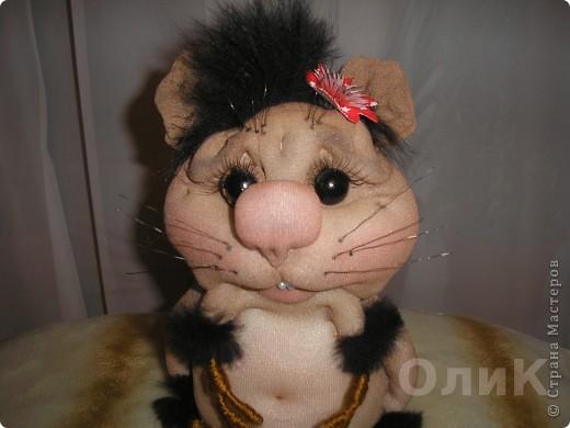 Запасливая хомячка Соня. фото 4