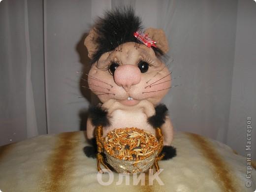 Запасливая хомячка Соня. фото 2