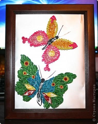 Пришла в голову мысль сделать таких вот  двух бабочек. Фон - фольга фото 1