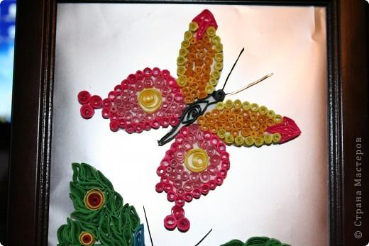 Пришла в голову мысль сделать таких вот  двух бабочек. Фон - фольга фото 3
