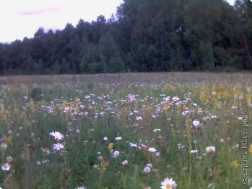 Природа моей Родины - Оренбуржье. фото 1