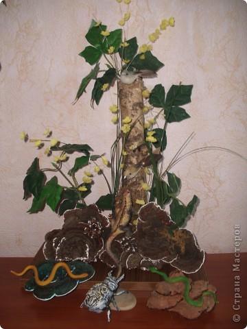 Вот такую карасату сделала моя мама. Она у нас уже давно лет 10. Догадываетесь , что это может быть?
