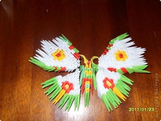 Поделка изделие Оригами китайское модульное Бабочка-Красавица Бумага.