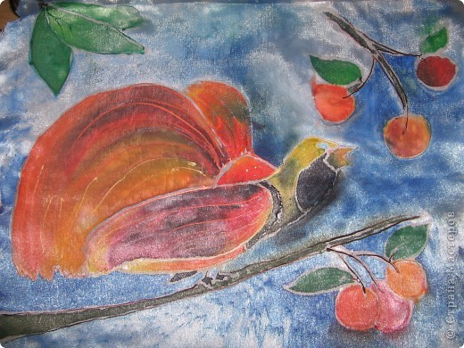 райская птичка фото 1