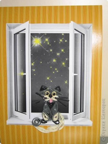 Кошка и ночь