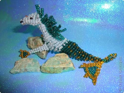 Гиппокамп – морская лошадь в греческой мифологии. фото 7