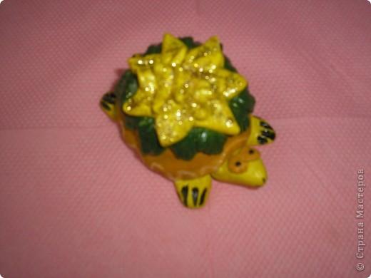 Черепашка декорирована цветком фото 2