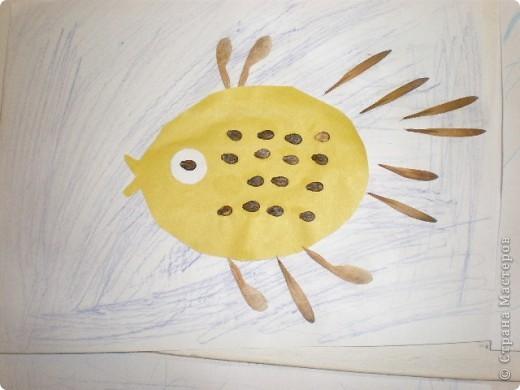 Занятие проводилось в подготовительной группе с детьми 6-7 летнего возраста. Рыбок вырезали по трафарету. Использовали семена арбуза и семена клёна. фото 9
