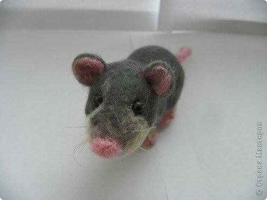 Крысик-симпотяшка! фото 3