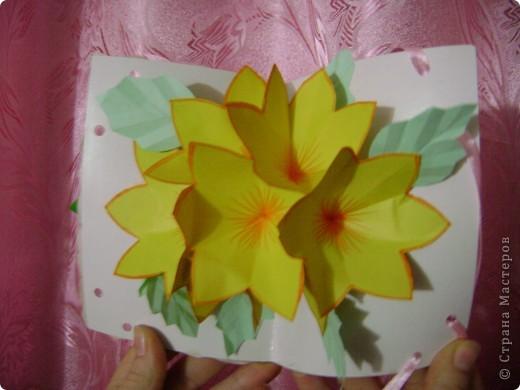 Еще цветочки фото 7