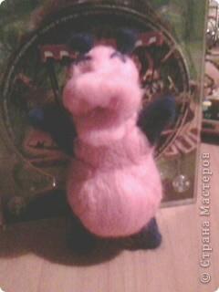 это моя Глория, правда розовая с синим, другой шерсти не было фото 1