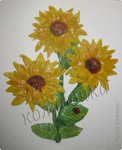 Подсолнухи опять такие же,как в прошлый раз,но третий цветок открытый,за МК спасибо М.Архиповой.Котиков сповторюшничала у Ларисы Ивановой,спасибо Лариса за таких лапулечек. фото 3