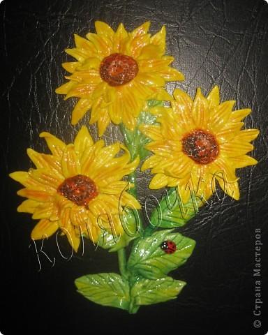 Подсолнухи опять такие же,как в прошлый раз,но третий цветок открытый,за МК спасибо М.Архиповой.Котиков сповторюшничала у Ларисы Ивановой,спасибо Лариса за таких лапулечек. фото 2