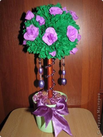 Сиреневые розы фото 1
