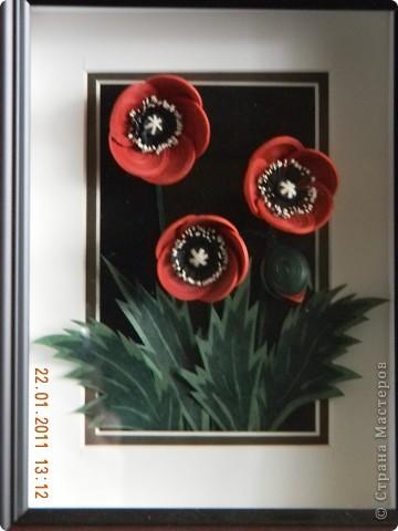 Первая попытка сделать цветы из полосок в 1,5 мм. Делать тонкие роллы сложно, но результат того стоит. Цветы получаются очень нежные и изящные. Огромное спасибо мастеру Osonika за ее великолепные работы из тонких роллов и за МК.