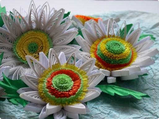 Наверно это декоративные подсолнухи. Хотела я сделать ромашки, но получились подсолнухи альбиносы фото 1