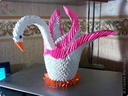 Лебедь фото 1