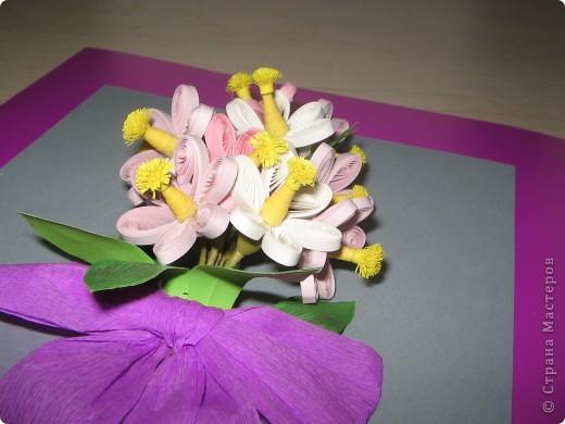 Такие вот весенние цветочки появились у меня в середине зимы фото 4