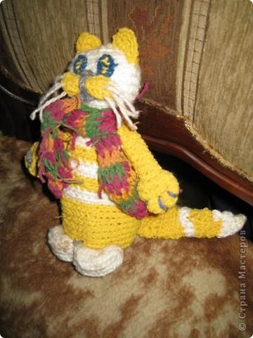 Котейка для моей большой коллекции кошек фото 2