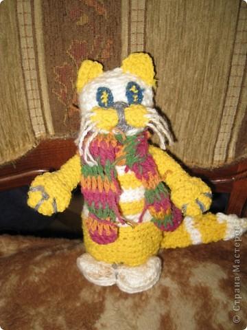 Котейка для моей большой коллекции кошек фото 1