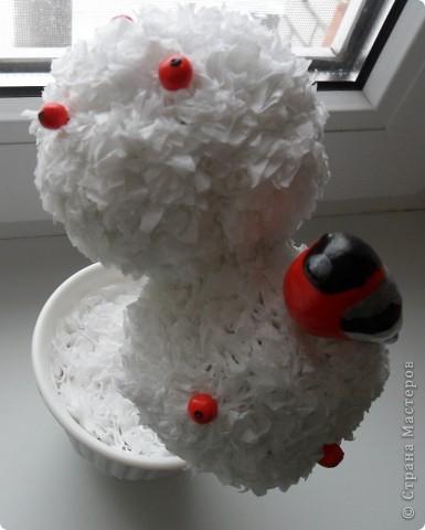 Снегирь на зимнем деревце фото 3