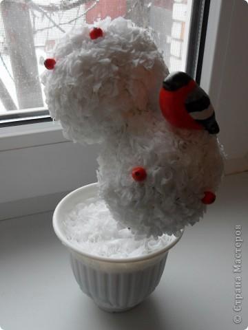 Снегирь на зимнем деревце фото 1