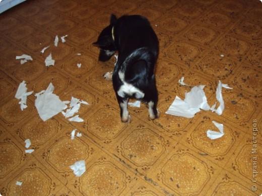 Жил-был пес... фото 4