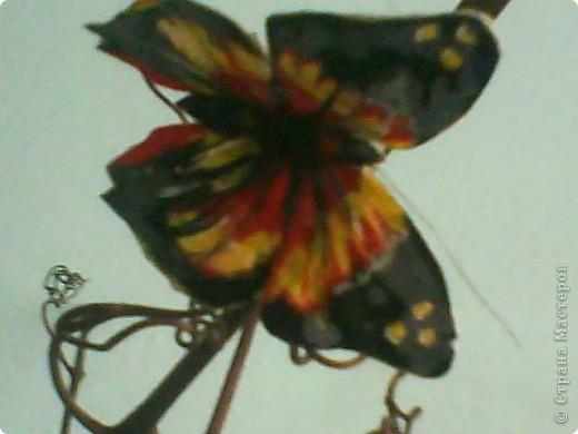 Я брала шёлковую ткань, желатинила её, посте того как высохла вырезала бабочек по шаблону,разукрасила,при помощи булек для изготовления цветов сделала прожилки и изгиб небольшой крылышек, из проволочки сделала усики. фото 1